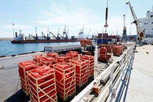 İzmir'den, Körfez ülkelerinin ambargo uyguladığı Katar'a, yaklaşık 4 bin ton gıda malzemesi taşıyan gemi limandan ayrıldı. Aliağa ilçesinde bulunan bir limandan yüklenen kuru gıda, meyve ve sebzelerden oluşan malzemeler yüklü gemi sabaha doğru yola çıktı. ( Cem Öksüz - Anadolu Ajansı )